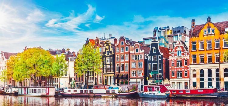مهاجرت به هلند