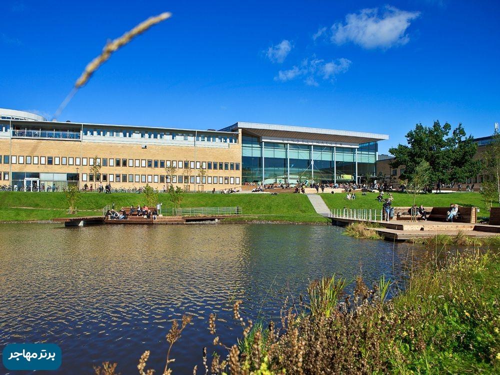بهترین دانشگاه های سوئد8